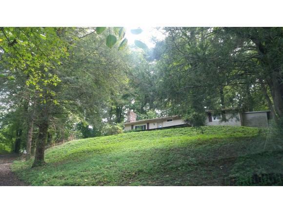 1220 Lloyds Chapel Rd, Mt Carmel, TN 37645 (MLS #414458) :: Griffin Home Group