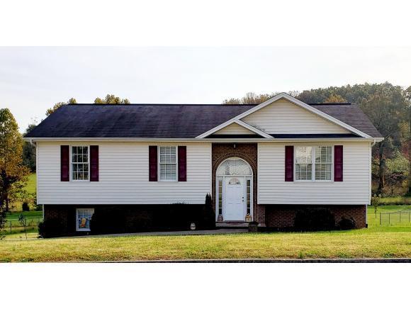 141 Hunters Run Lane, Mt Carmel, TN 37645 (MLS #414565) :: Griffin Home Group