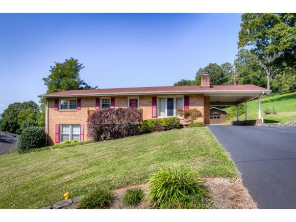 924 Afton St, Kingsport, TN 37660 (MLS #414625) :: Conservus Real Estate Group