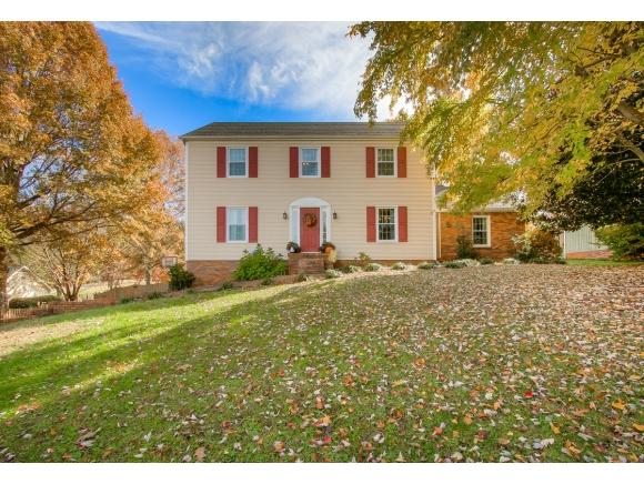 1420 Ruthbrooke Drive, Mt. Carmel, TN 37645 (MLS #414626) :: Griffin Home Group