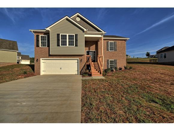 729 Ashley Meadows, Jonesborough, TN 37659 (MLS #414641) :: Griffin Home Group