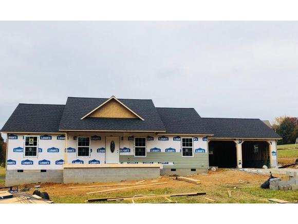 390 Kinser Park Lane, Greeneville, TN 37743 (MLS #414677) :: Conservus Real Estate Group