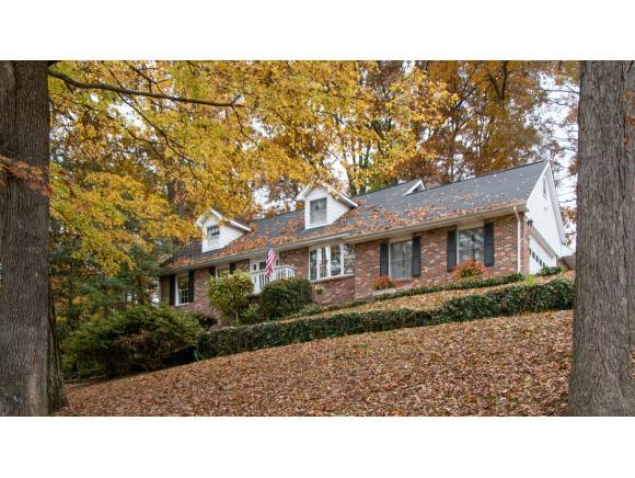 21835 Old Dominion Road, Bristol, VA 24202 (MLS #414774) :: Griffin Home Group