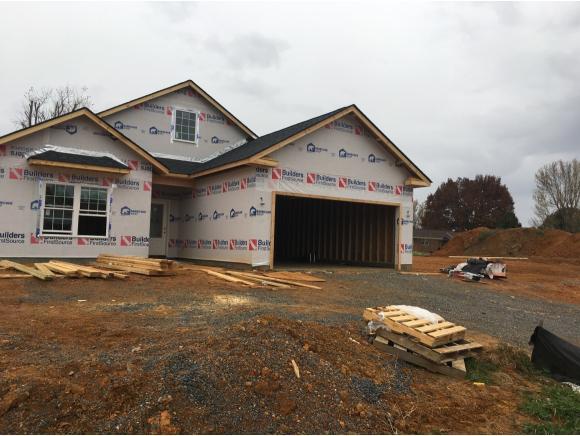 1161 Osler, Jonesborough, TN 37659 (MLS #414781) :: Conservus Real Estate Group