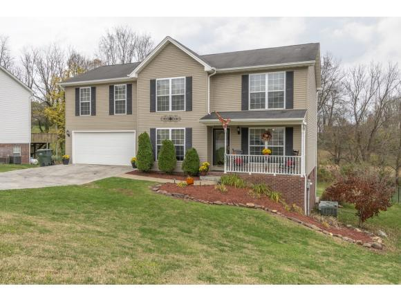 307 Henrys Lane, Bristol, VA 20202 (MLS #414791) :: Highlands Realty, Inc.