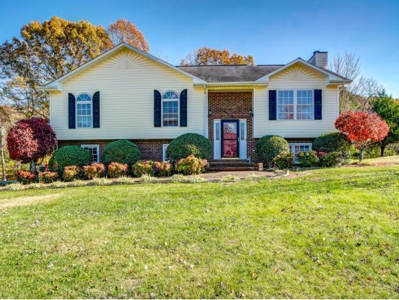 109 Mitchell Creek, Jonesborough, TN 37659 (MLS #414854) :: Griffin Home Group