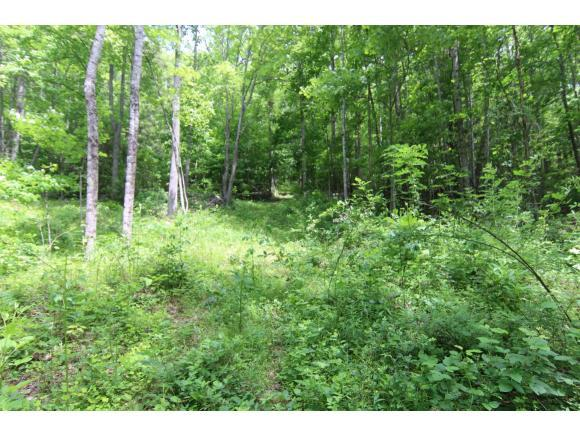 000 Kirby Branch Road, Zionville, NC 28698 (MLS #414883) :: Conservus Real Estate Group
