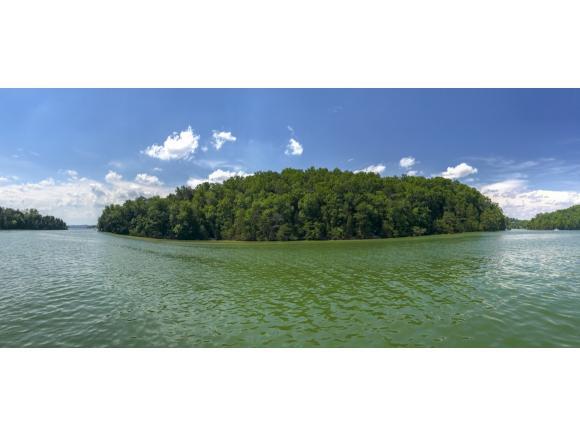 0 Douglas Lake, Dandridge, TN 37725 (MLS #414945) :: Conservus Real Estate Group