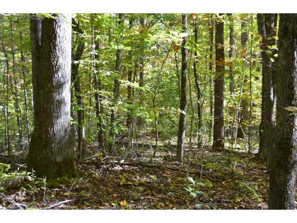 00 East Short Mountain 57.7 Acres, Sneedville, TN 37869 (MLS #414982) :: Conservus Real Estate Group