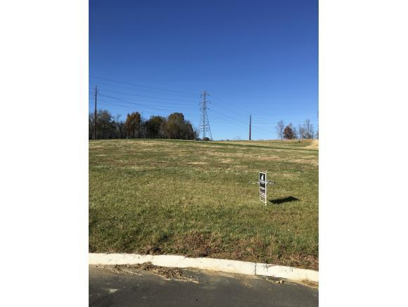 Lot 28 Loafer's Glory Ct, Gray, TN 37615 (MLS #415035) :: Conservus Real Estate Group