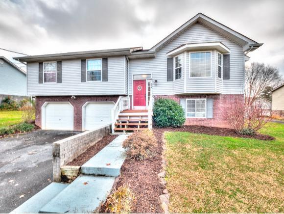 114 Jenny Lane, Jonesborough, TN 37659 (MLS #415073) :: Conservus Real Estate Group