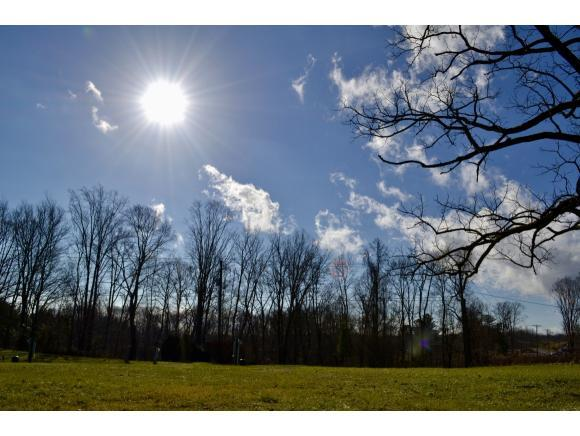 000 Carty Trailer Park Road #1, Clintwood, VA 24228 (MLS #415722) :: Bridge Pointe Real Estate