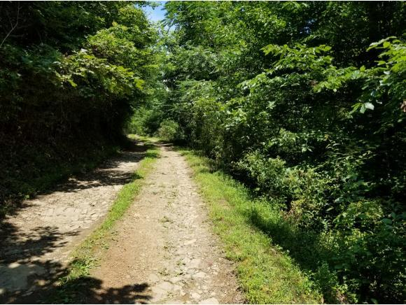TBD Ruritan Run Road, Gate City, VA 24251 (MLS #415738) :: Conservus Real Estate Group