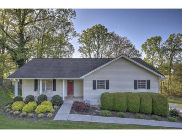 3149 Winesap Road, Kingsport, TN 37663 (MLS #415845) :: Highlands Realty, Inc.