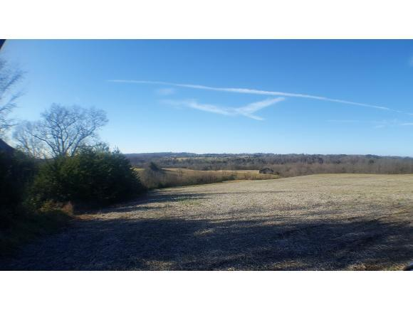 00 Foxford Rd, Greeneville, TN 37743 (MLS #415847) :: Highlands Realty, Inc.