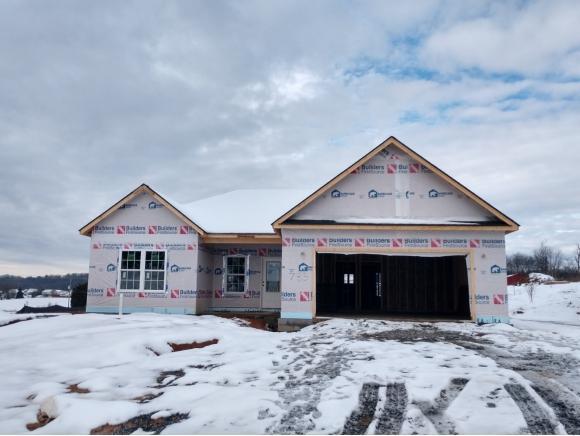 785 Ashley Meadows, Jonesborough, TN 37659 (MLS #415876) :: Griffin Home Group