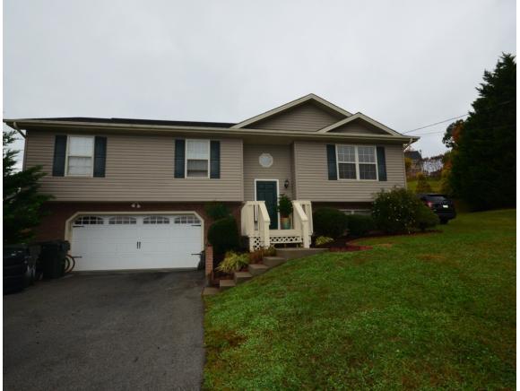 615 Alfalfa, Jonesborough, TN 37659 (MLS #415927) :: Griffin Home Group