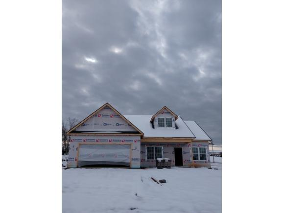 713 Ashley Meadows, Jonesborough, TN 37659 (MLS #415955) :: Griffin Home Group