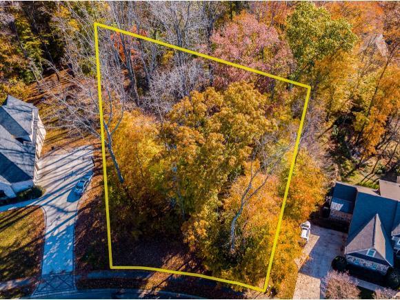 212 Highland Ridge Terrace, Johnson City, TN 37615 (MLS #415983) :: Highlands Realty, Inc.
