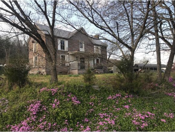 362 Tarpine Valley Rd, Rogersville, TN 37857 (MLS #416033) :: Griffin Home Group