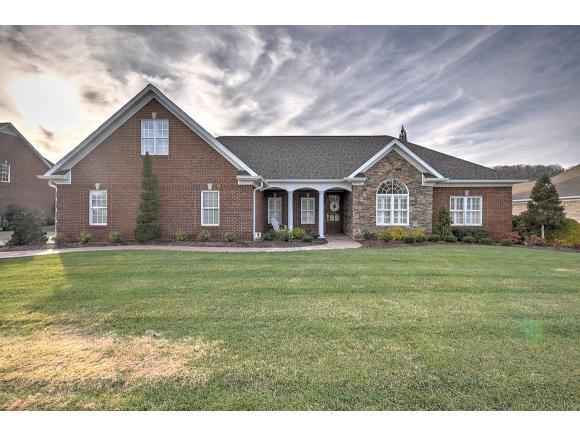 121 Golf Ridge Drive, Kingsport, TN 37664 (MLS #416107) :: Conservus Real Estate Group