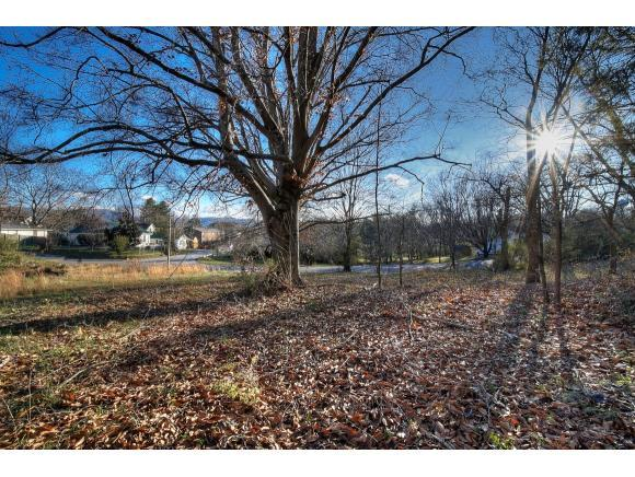 1710 Skyline Dr, Johnson City, TN 37604 (MLS #416169) :: Griffin Home Group