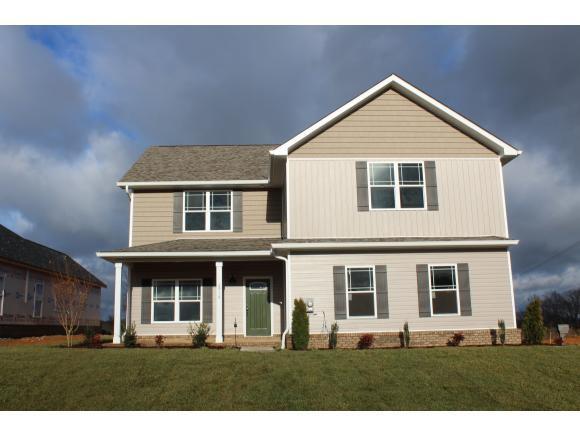 2918 Southbridge Road, Kingsport, TN 37664 (MLS #416219) :: Conservus Real Estate Group
