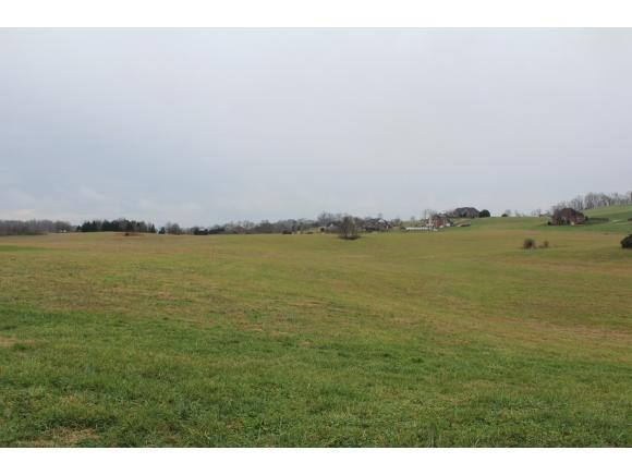 LT 2 Waterstone Circle, Greeneville, TN 37745 (MLS #416248) :: Highlands Realty, Inc.