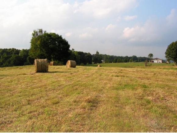 179 Plantation Dr, Rogersville, TN 37642 (MLS #416323) :: Griffin Home Group