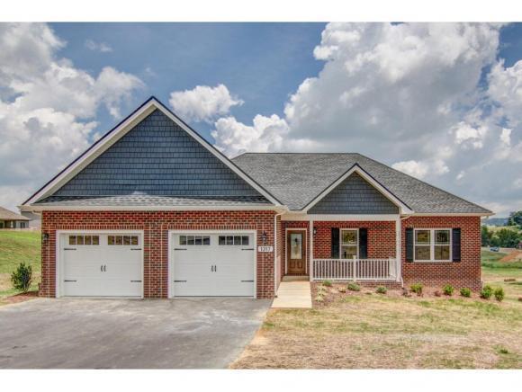 1317 Peaceful Drive, Jonesborough, TN 37659 (MLS #416401) :: Griffin Home Group