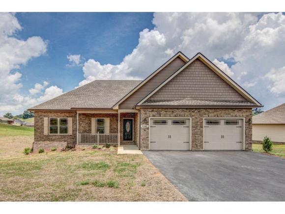1341 Peaceful Drive, Jonesborough, TN 37659 (MLS #416404) :: Griffin Home Group