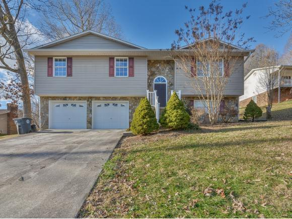 304 Roundtree Avenue, Mount Carmel, TN 37645 (MLS #416406) :: Conservus Real Estate Group