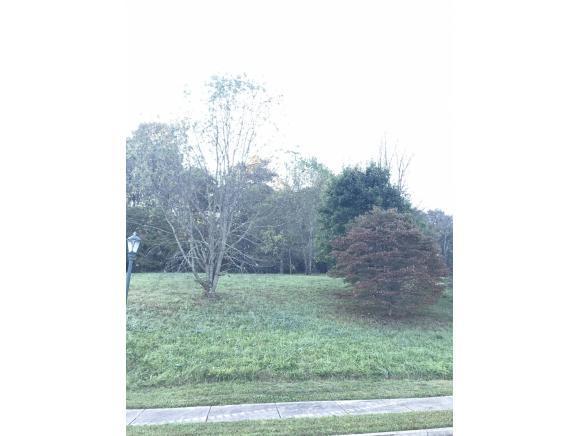 148 Quail Creek Ct, Jonesborough, TN 37659 (MLS #416425) :: Highlands Realty, Inc.