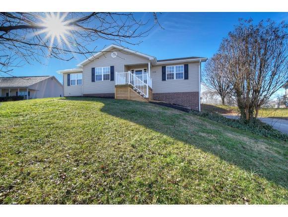 208 Pine Bark Drive, Jonesborough, TN 37659 (MLS #416464) :: Griffin Home Group