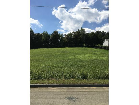 137 Olde Farm Drive, Jonesborough, TN 37659 (MLS #416474) :: Griffin Home Group