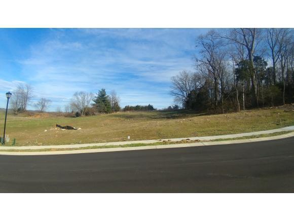 Lot 31 Conestoga Pass, Johnson City, TN 37601 (MLS #416500) :: Griffin Home Group