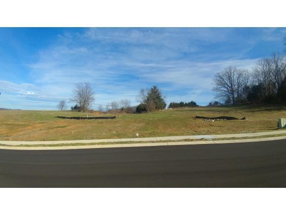 Lot 32 Conestoga Pass, Johnson City, TN 37601 (MLS #416501) :: Griffin Home Group