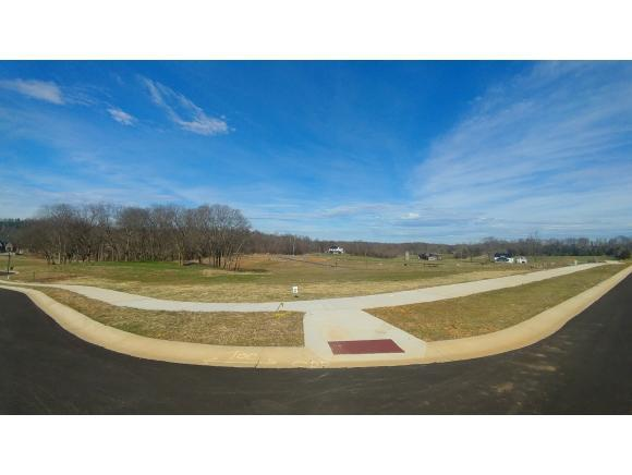 Lot 37 Conestoga Pass, Johnson City, TN 37601 (MLS #416504) :: Griffin Home Group