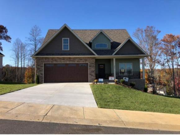 3062 Calton Hill, Kingsport, TN 37664 (MLS #416525) :: Griffin Home Group