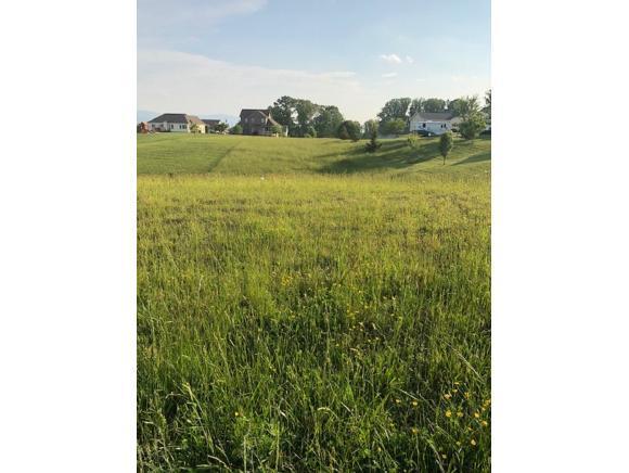 601 Sand Ridge Circle, Jonesborough, TN 37659 (MLS #416574) :: Griffin Home Group