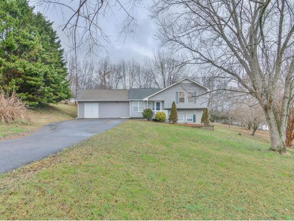 219 Dorothy Circle, Limestone, TN 37681 (MLS #416626) :: Griffin Home Group