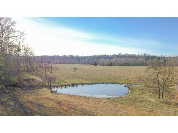 TBD Brown Dr., Chuckey, TN 37604 (MLS #416627) :: Griffin Home Group