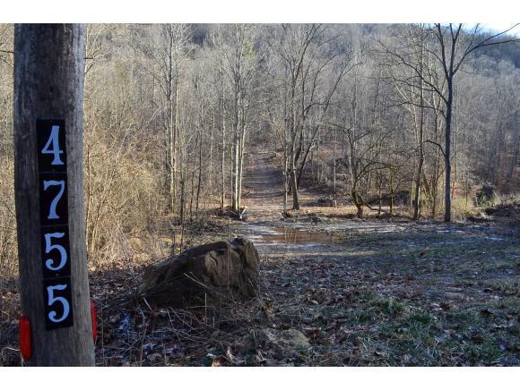 4755 Snake Hollow Rd, Sneedville, TN 37869 (MLS #416811) :: Highlands Realty, Inc.
