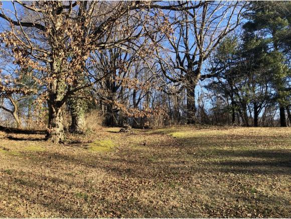 TBD Lynn Drive, Johnson City, TN 37601 (MLS #416827) :: Highlands Realty, Inc.