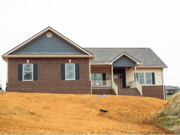 57 Serene Ct, Jonesborough, TN 37659 (MLS #417402) :: Conservus Real Estate Group