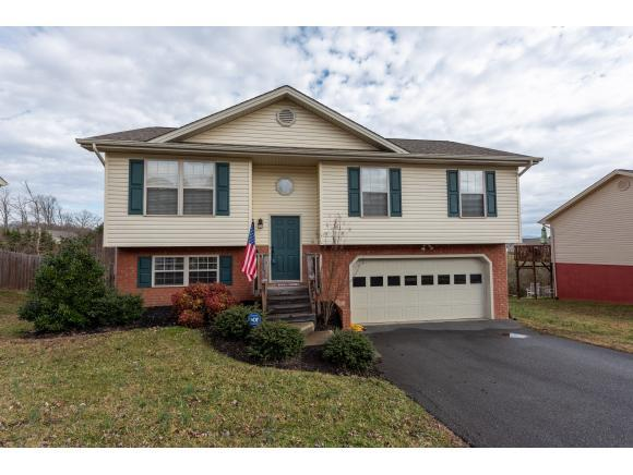 1312 Meadow Creek Lane, Jonesborough, TN 37659 (MLS #417541) :: Conservus Real Estate Group