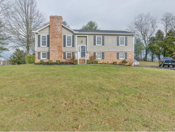 109 Tulip Grove Circle, Bristol, TN 37620 (MLS #417649) :: Conservus Real Estate Group