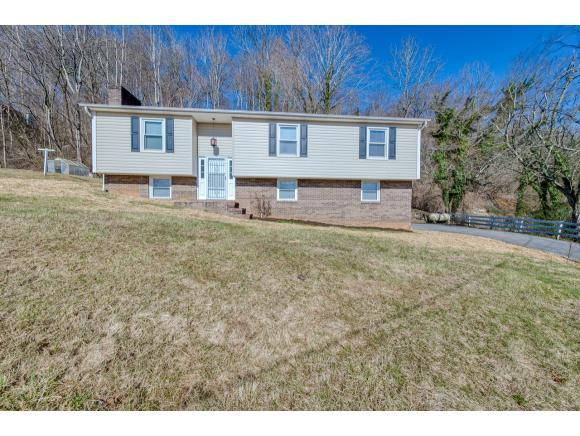 9125 Nininger Road, Bristol, VA 24202 (MLS #417746) :: Highlands Realty, Inc.