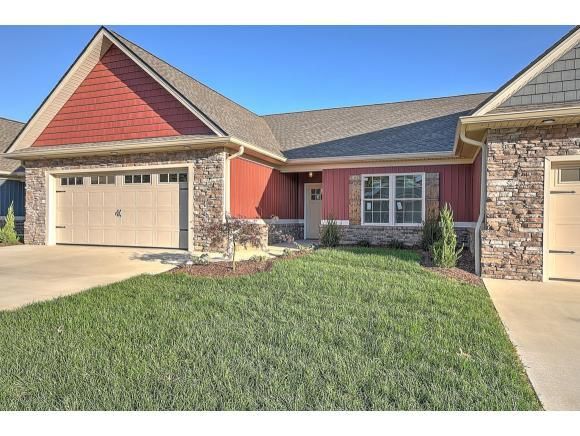 143 Hacker Martin Dr -, Gray, TN 37615 (MLS #417768) :: Griffin Home Group