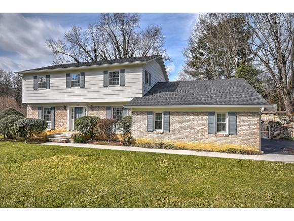 201 Forest Hills Dr, Bristol, TN 37620 (MLS #417912) :: Highlands Realty, Inc.